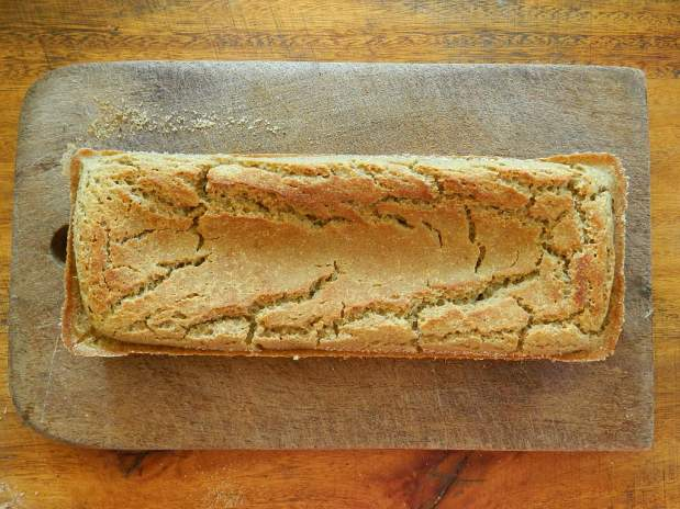 Receta de pan integral libre degluten
